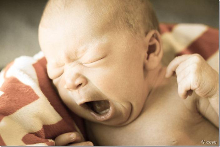Zara's yawn