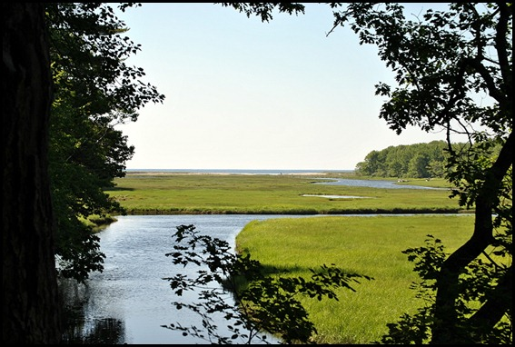 02e4 - Rachel Carson Nature Trail