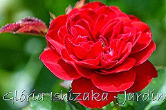 3  - Glória Ishizaka - Rosas do Jardim Botânico Nagai - Osaka