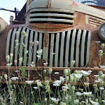David Thompson-Truck  Flowers.jpg
