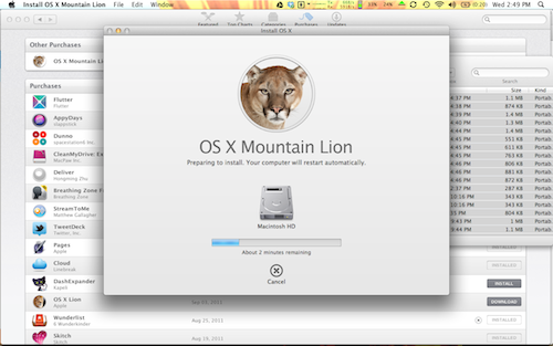 Mountainlioninstall