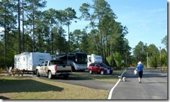Site 65 Avalon Landing RV Park