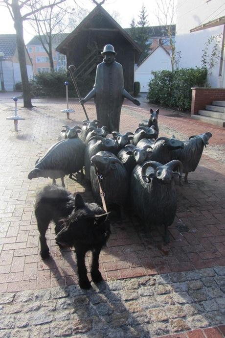 Rosca als Schäferhund (2)