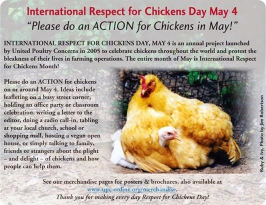 respeto pollos