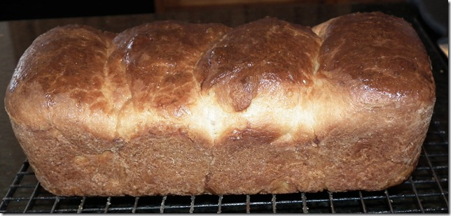 TWD--Brioche Loaves 8-22-11