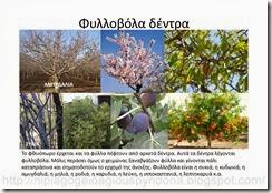 φθινοπωρο(2)