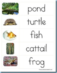 Word Cards Pond2