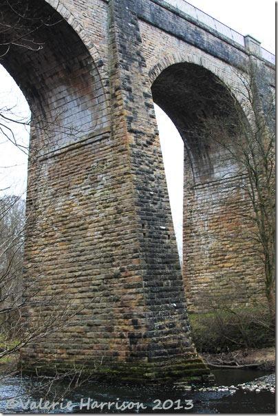 5-aquaduct