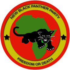 newblackpantherparty