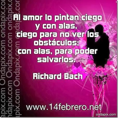 Al amor lo pintan ciego y con alas, ciego para no ver los obstáculos; con alas, para poder salvarlos. Richard Bach
