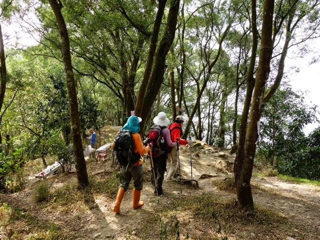 2013_0127 白賓山、真笠山、笠頂山 O走_052