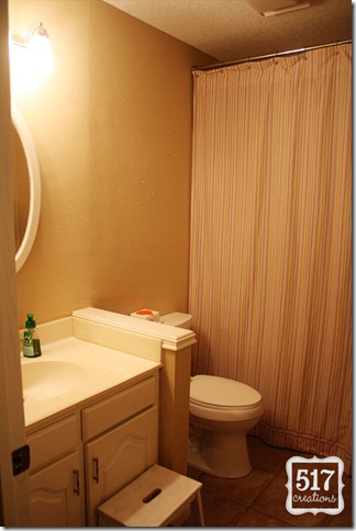 bathroom_renovation_during