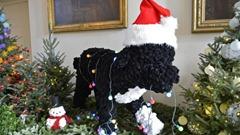 christmas 2012 white house