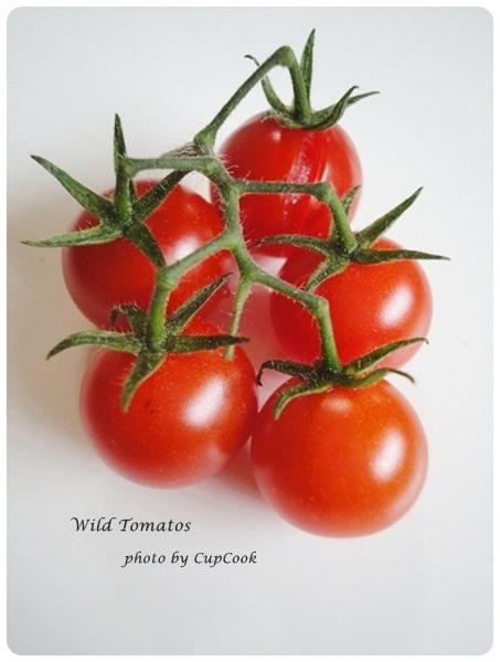 tomato (27)