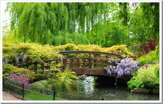 spring-garden-bridge-park-beautiful-bridge-river-fence-plants-flowers-trees-weeping