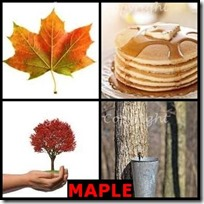 MAPLE- 4 Pics 1 Word Answers 3 Letters