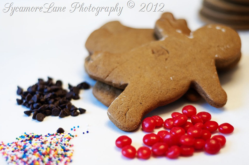 December 2012-gingerbread men-w