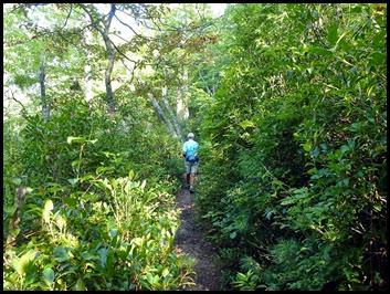 04 - Trail narrows also