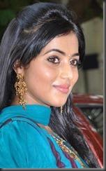 ACTRESS SHAMNA KASIM NEW HOT STILLS - Indian-Actress-Stills