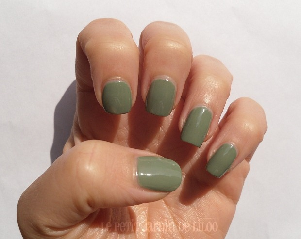 003-accessorize-nail-polish-wyoming-notd-review-swatch