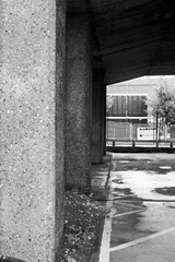 Under-the-Bridge-5