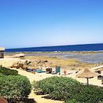 Sea Life Resort 5 (6).JPG