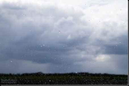 sky_20120517_rain1