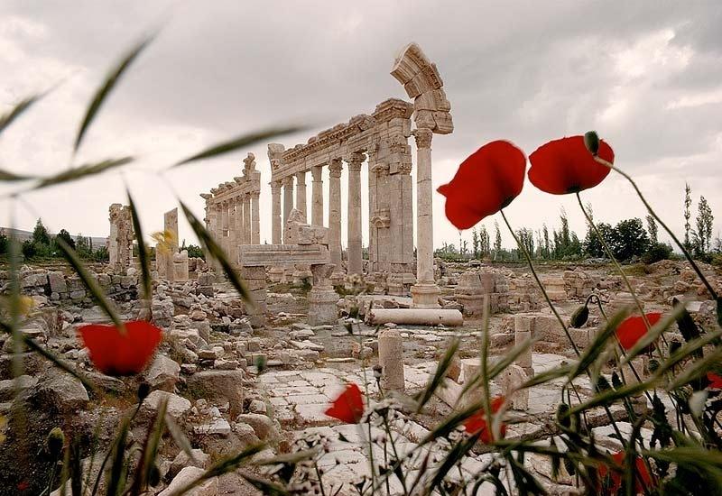 baalbek-ruins-163868-sw