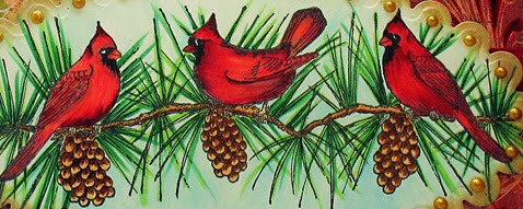 Cardinal Branch 2013  c