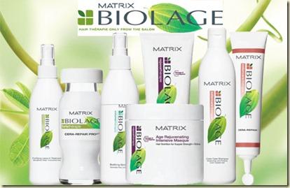 Productos para el Cabello Matrix 3