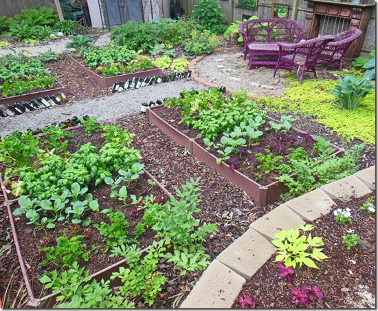 How To Plant A Full Shade Raised Vegetable Garden Bed Year