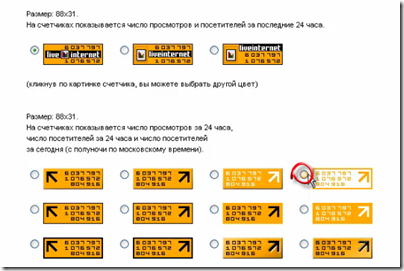 Ustanavlivaem-schetchik-LiveInternet-14