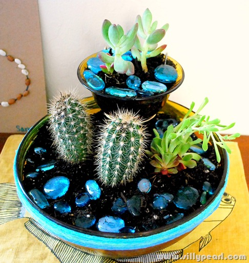 Succulents Planted in Retro Chip n Dip Bowl
