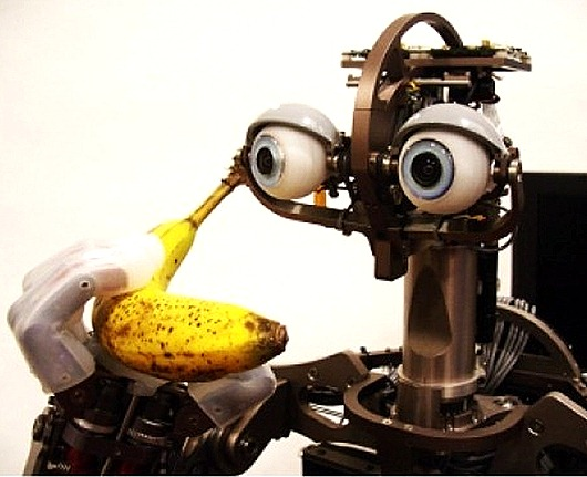 16_robot_domo_2