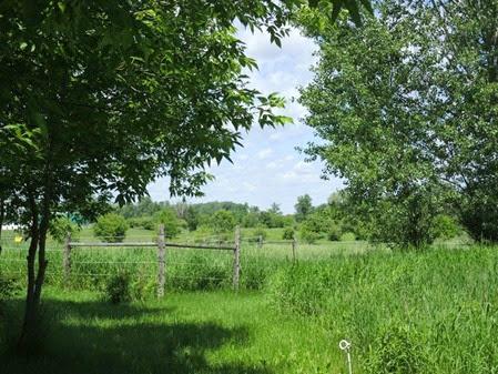 20130609_140045-property