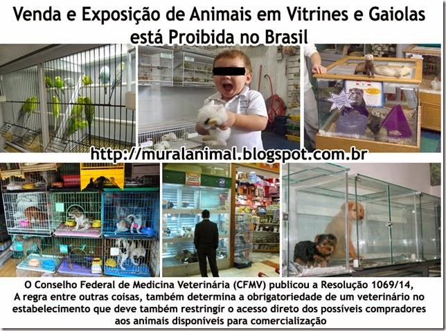 venda_animais