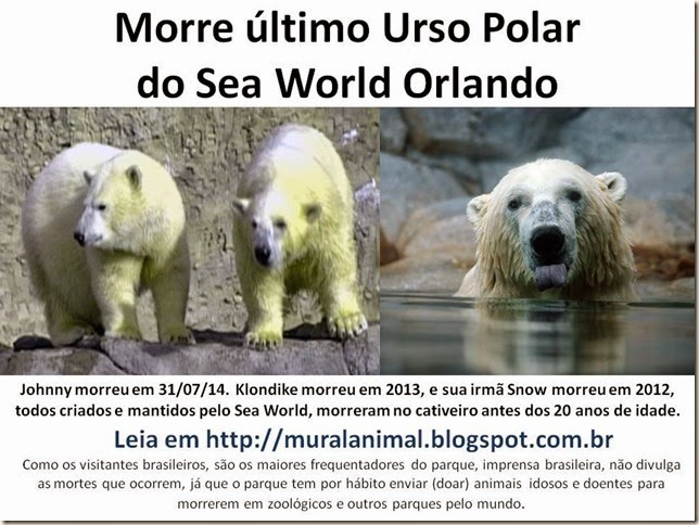 Morre johnny Urso Polar