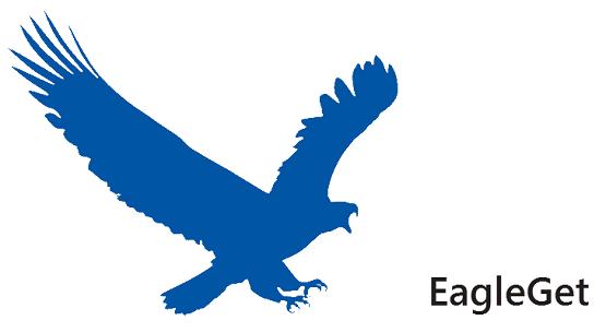EagleGet أفضل بديل مجانى لبرنامج انترنت داونلود مانجر