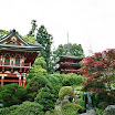 View of Japanese Tea Garden