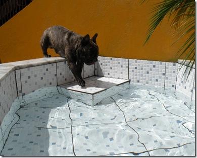 Descobrindo a piscina