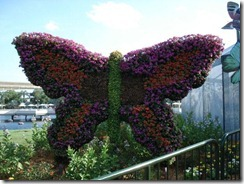 Epcot butterfly topiary