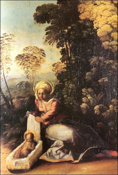 Dosso Dossi, Madone avec l'enfant ou la bohémienne