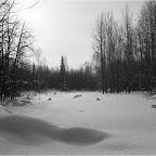 2011-snejinka-18.jpg
