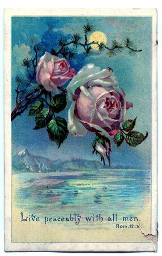 rosesmoonlightgfairy