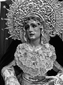 rosario-linares-besamanos-2012-alvaro-abril-(2).jpg