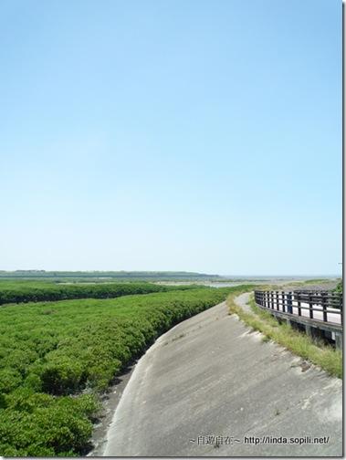 十七公里海岸風景區-22