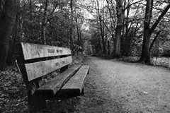 Hartsholme-Memorial-Bench