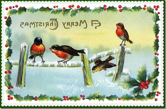 Winter Song Birds - a Vintage Christmas Card Illustration