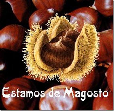 Magosto1