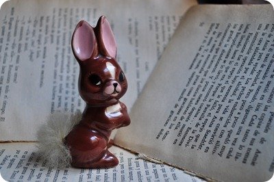 230 conejo